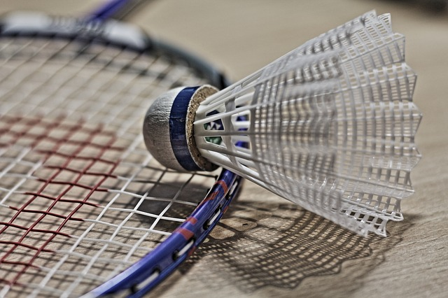 Best badminton shuttlecock